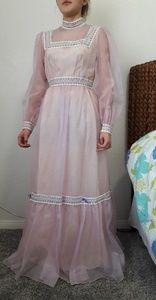 Lorrie Deb Vintage  Pink Chiffon Dress